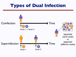 HIV Infection: Worse the Second Time?
