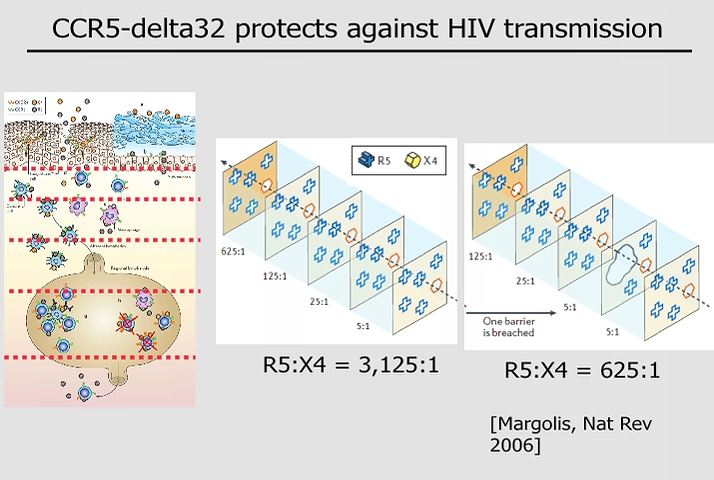 The Berlin Patient: Eradication of HIV with CCR5 deficient hematopoietic stem cells